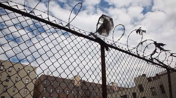 A stretch of fence topped with curled barbed wire, in which a plastic bag is caught